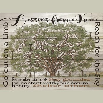 Framed Lessons From A Tree