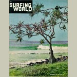 Surfing World Canvas Vol 3 No 3